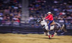 Bull Riders 4