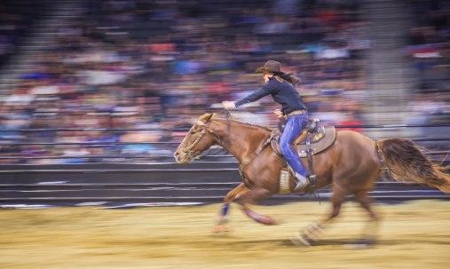 Bull Riders 5