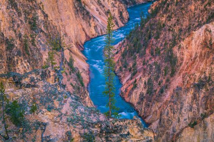 Yellowstone 03